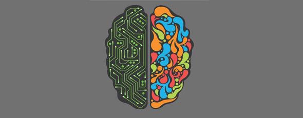 Teoria del Cerebro