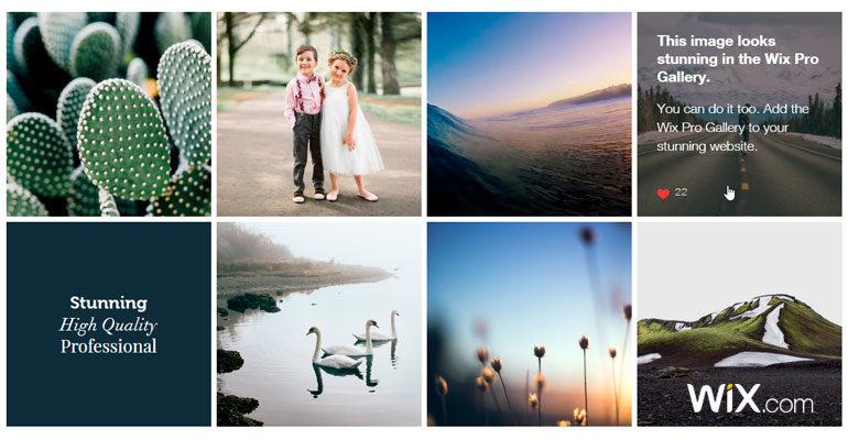 galerias fotograficas wix