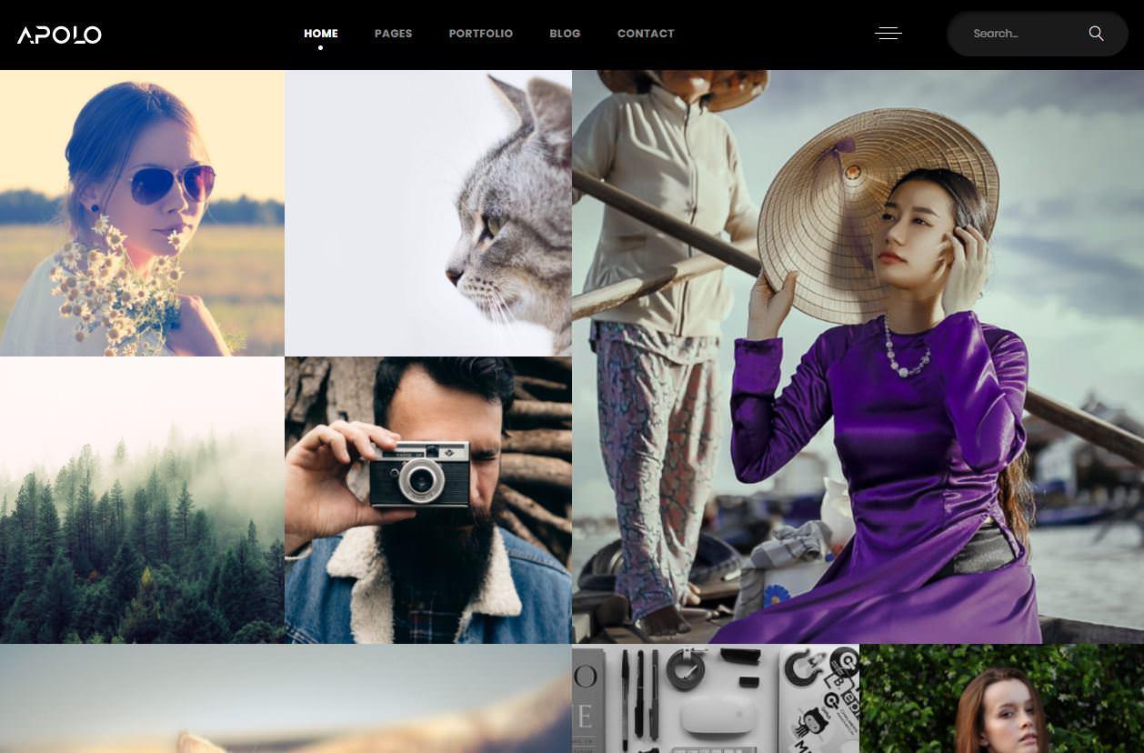 Apola WordPress Theme