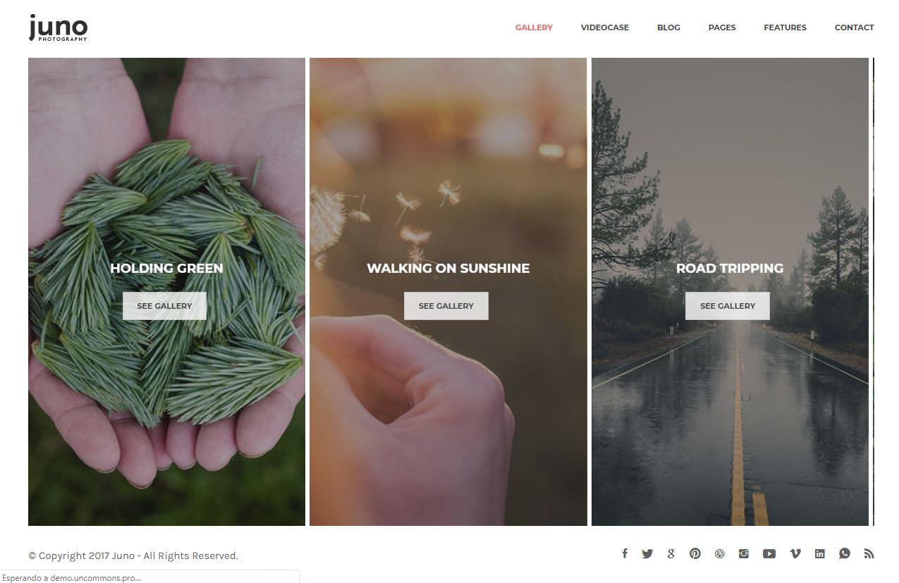Juno WordPress Theme